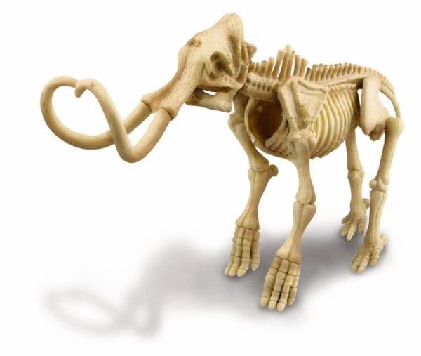 Cava y encuentra un mamut