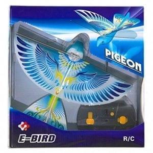 eBird Blue (Pigeon)