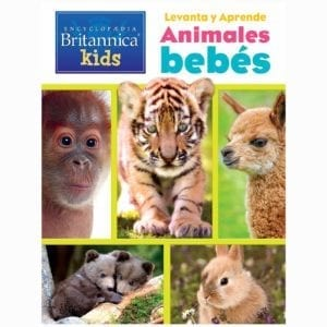 Libro Levanta y Aprende Animales Bebes