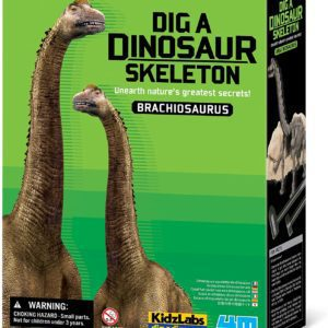 Kit De Excavación Esqueleto De Dinosaurio Braquiosaurio